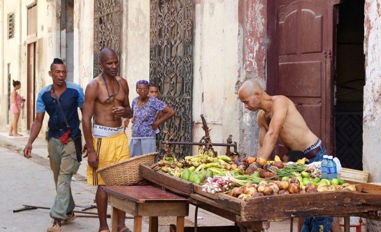 Devant une maison, cet homme s'improvise vendeur de fruits et légumes en installant bananes, mangues, citrons, navets…sur une table fabriquée avec des tréteaux. © Lucie Martin/Worldzine