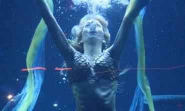 PORTRAIT. Claire Baudet, sirène à plein temps